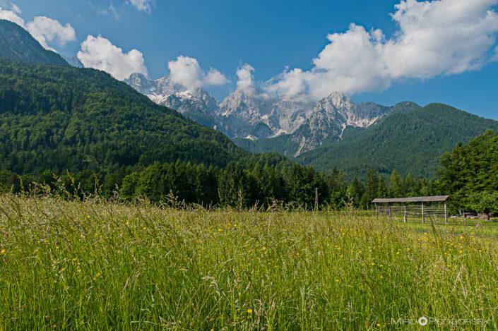Zdravko from Šmartno